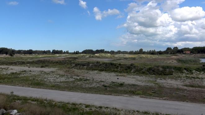 Jungle deserte 8 mois après démantèlement